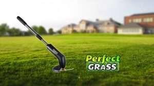 Perfect Grass recensione